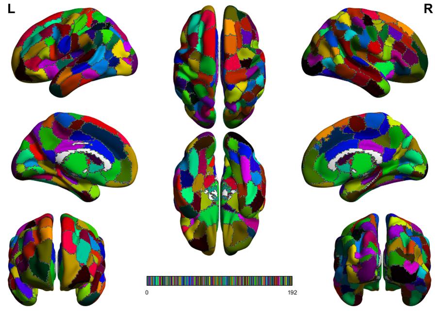 Structural Brain Parcellation